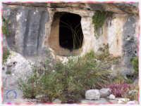 CAVA PARADISO  - Rosolini (3756 clic)