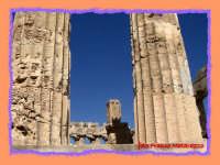 SELINUNTE:rovine  - Selinunte (2240 clic)