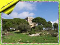 CASTELLO DELL'OLIVA  - Noto (4225 clic)