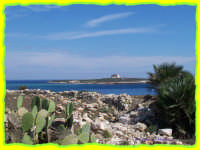 l'isola che c'è:tra  mare e fichid'india  - Portopalo di capo passero (2083 clic)