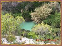 ROSOLINI-Cava Paradiso: dove volano...le farfalle   - Rosolini (3943 clic)