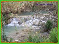 ROSOLINI-Cava Paradiso:natura vivente  - Rosolini (2724 clic)