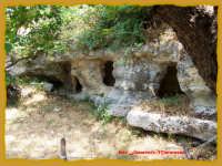 contrada Cansisina  - Rosolini (4359 clic)