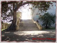 IL CASTELLO  - Donnafugata (3792 clic)