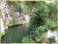 CAVA PARADISO:Oasi della natura  - Rosolini (4565 clic)