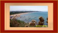 PITTURA FOTOGRAFICA  - Selinunte (1389 clic)