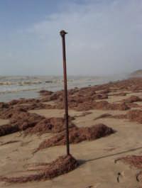 mareggiata sulla costa gelese dicembre 2004  - Gela (4824 clic)