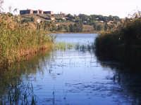 il lago di pergusa  - Pergusa (3930 clic)
