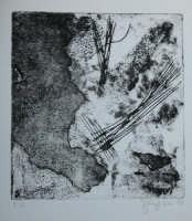 Giuseppe Sirni - rocce - prova d'autore - punta secca e carta vetrata su cartoncino trattato.  - Mistretta (3281 clic)