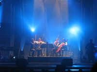 Concerto Irene Grandi 2008. Quartetto d'archi.  - Catania (1481 clic)