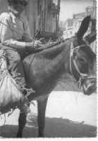 ASINO (1969)  - Campobello di licata (5669 clic)