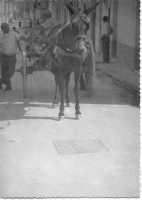 CARRETTO (1969)  - Campobello di licata (4828 clic)