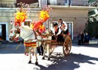 carretto siciliano  - Carlentini (5079 clic)