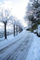 nevicata 2009  - San piero patti (4120 clic)