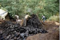 san piero patti la fossa del carbone  - San piero patti (4415 clic)