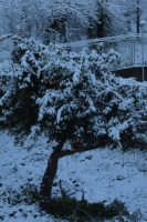 nevicata 2009  - San piero patti (2276 clic)