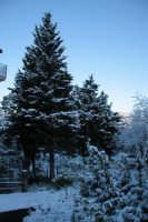 nevicata 2009  - San piero patti (2363 clic)