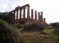 Agrigento. Valle dei templi  - Agrigento (2689 clic)