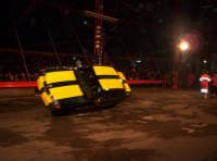 Acrobazie al circo DIC.2004  - Catania (1447 clic)