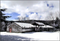 Casa forestale   - Nebrodi (7628 clic)
