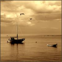 Sul Mare di Letojanni  - Letoianni (6544 clic)