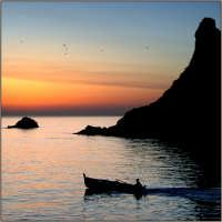 Gabbiani e il mare  - Aci trezza (2587 clic)