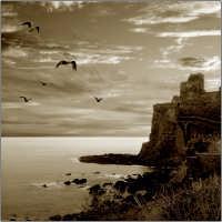 Il Castello  - Aci castello (4345 clic)