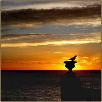 Un mattino di Novembre   - Aci castello (3506 clic)