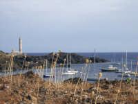 USTICA - Faro di Punta Gavazzi  Arberi e cipudde  - Ustica (5166 clic)