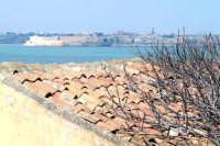 Ortigia all'orizzonte vista dal Plemmirio.  - Siracusa (2052 clic)