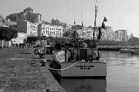 Pescherecci al Porto Grande davanti al molo Zanagora. Nello sfondo la Marina  - Siracusa (2506 clic)