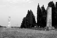 Tempio di Giove detto (le due colonne). E' una costruzione risalente al VI sec. a.C.  - Siracusa (2192 clic)