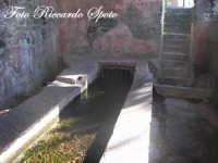 Santa Maria di Licodia, l'antico lavatoio pubblico, alimentato da una sorgente naturale.  - Santa maria di licodia (1823 clic)