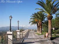 Santa Maria di Licodia. Villa Comunale Giardino Belvedere. Uno dei viali della villa, da cui si gode, un vasto panorama sulla piana di Catania.  - Santa maria di licodia (7665 clic)