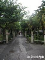Ragua Ibla. Giardini Iblei, un viale. RAGUSA Riccardo Spoto