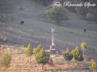 Randazzo, croce sulla collina con cavalli al pascolo  - Randazzo (2585 clic)