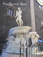 Piazza Duomo La fontana dell'Amenano o di L'acqua o' linzolu. Ideata da Tito Angelini nel 1880  - Catania (3203 clic)