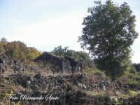 Bosco di Santa Maria di Licodia, m 1100 slm. Antiche case in pietra lavica  - Santa maria di licodia (2233 clic)