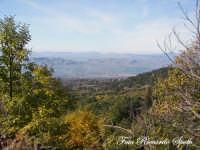 Bosco di Santa Maria di Licodia, m 1100 slm. la città sullo sfondo è Adrano   - Santa maria di licodia (2083 clic)