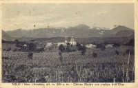 Milo, panorama tra i vigneti, con la chiesa madre e l'Etna, anni '40  - Milo (5184 clic)