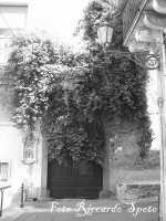 S.Maria di Licodia, quartiere Chiesa-Baglio Portale in via Samperi  - Santa maria di licodia (1569 clic)
