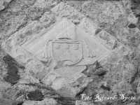 Santa Maria di Licodia, quartiere Chiesa-Baglio. Stemma del Vescovo Abate Platamone, sec XV, nella facciata della torre.  - Santa maria di licodia (1519 clic)