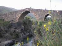 Il Ponte dei Saraceni, splendido esempio di architettura medioevale  - Adrano (3178 clic)