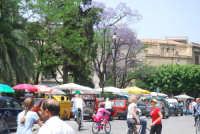Palermo Piazza Marine Mercatino dell'antiquariato  - Palermo (4778 clic)