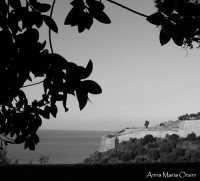 Veduta dalla Villa Palmeri  - Termini imerese (1897 clic)