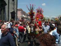 Sfilata di Carretti Siciliani durante la festa di Sant'Alfio  - Trecastagni (2282 clic)
