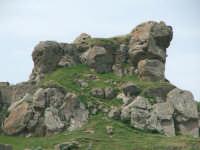 Leone scolpito sulla roccia   - Cerami (5090 clic)