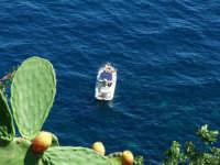 Tra la natura ed il mare  - Acireale (1432 clic)