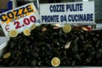 Cozze   - Siracusa (3479 clic)