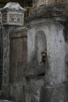 Sicuramente uno degli angoli più ricordati da chi ha già percorso le strade di S. Stefano Briga, 'A Funtaneddra (settembre 2006)  - Santo stefano briga (4392 clic)